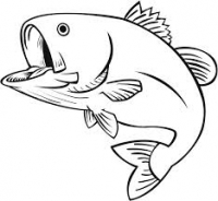 Fish -> Fishes???